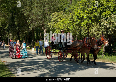 Women in flamenco dress and a barouche carriage in Maria Luisa Park during the Seville Spring Fair, Seville, Andalusia, - Stock Photo
