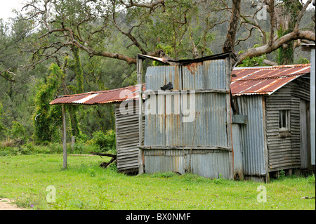 Corrugated Iron Bush hut in Australia - Stockfoto