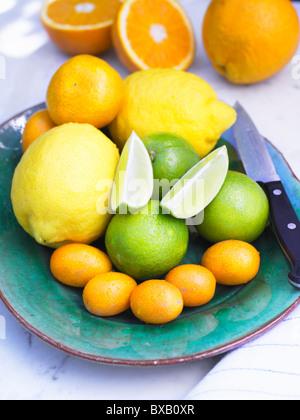 Assortment of citrus fruits - Stockfoto
