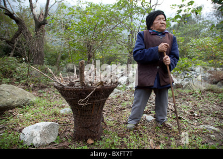 An old women pauses to rest while she is out scavenging for firewood in a small village in Gansu in west China. - Stock Photo