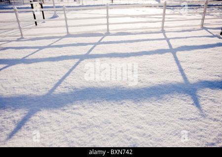morning sun making long shadows on snow - Stock Photo