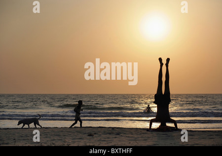 Person Doing Head Stand With Man Running On Beach By Dog - Stock Photo