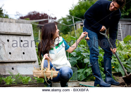 A young couple working on an allotment together - Stock Photo