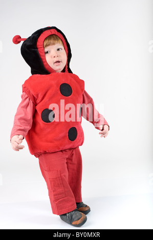 young boy dressed in a ladybug costume isolated - Stock Photo