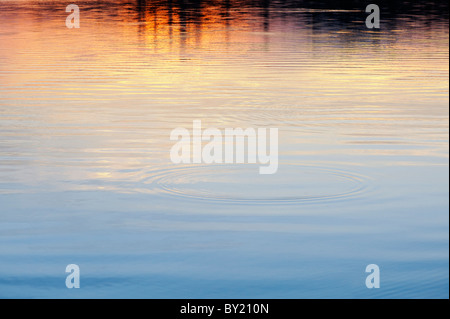 Golden water ripples at sunset on a lake in India - Stock Photo