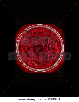 Close up of red pickled cabbage in jar - Stock Photo