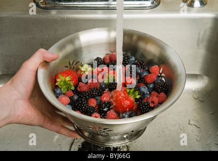 Fresh strawberries, red raspberries, blackberries and blueberries in a metal colander being rinsed under a sink - Stock Photo