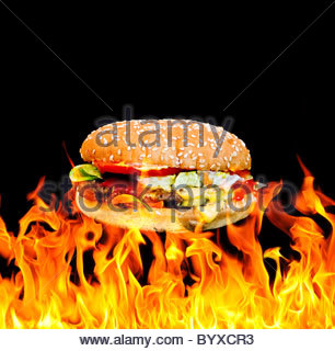 Flame grill Cheeseburger - Stock Photo
