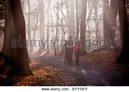 A young couple pushing a stroller in the park, rear view - Stock Photo