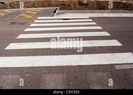 crosswalks, white on black asphalt - Stock Photo