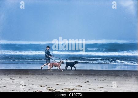 Man on beach walking two dogs, Moro Bay, California, USA - Stock Photo