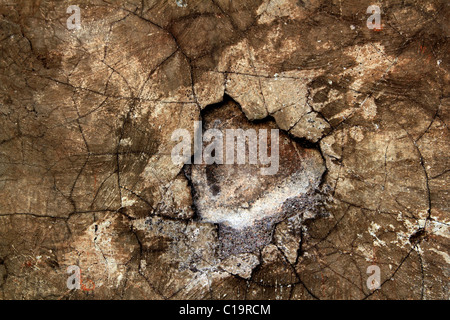 aged wall texture grunge broken weathered cement stucco background - Stock Photo