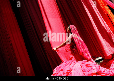 India, Rajasthan State, drying of strips of cotton for sari fabrication - Stock Photo
