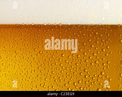Beer in glass,  Head and condensation - Stockfoto