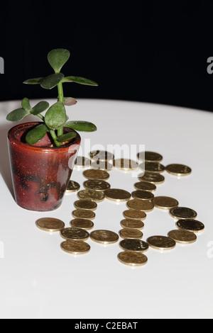 Der Australische Dollar ist das offizielle Zahlungsmittel auf dem gleichnamigen Kontinent. Der Wechselkurs Schweizer Franken - Australischer Dollar gibt das Verhältnis zwischen der Schweizer.