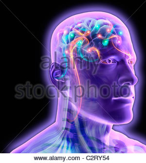 Transparent man's brain glowing and sparkling - Stock Photo