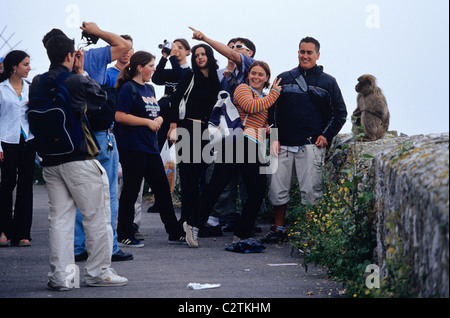 Young tourists feeding and teasing the Barbary Apes on the summit of the Rock of Gibraltar - Stock Photo