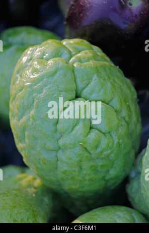 chayote fruits sechium edule a vegetable grown mostly in the stock photo royalty free image. Black Bedroom Furniture Sets. Home Design Ideas