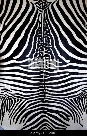 animal zebra skin black and white fur stripes leather background - Stock Photo