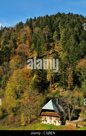 Europe, Germany, Baden-Wuerttemberg, View of house in black forest - Stock Photo