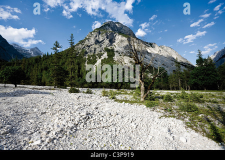 Austria, Tyrol, View of landscape with Karwendel mountains in background - Stock Photo