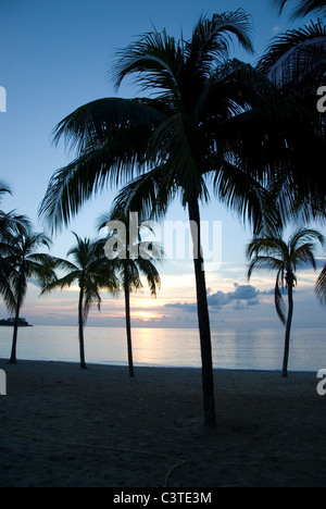evening tranquility, Negril, Jamaica - Stock Photo