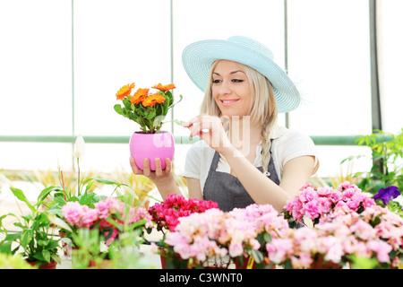 Female gardener examining flower in a garden - Stock Photo