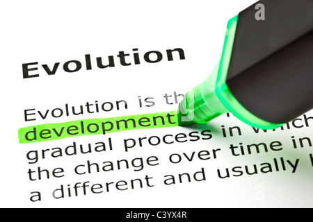'Development' highlighted in green, under the heading 'Evolution' - Stockfoto