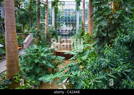 United States Botanic Garden Conservatory, Washington DC, USA Stock ...