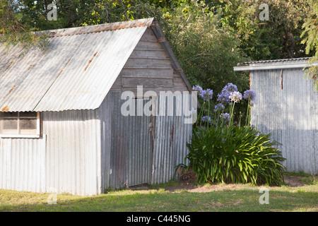 A backyard shed - Stockfoto