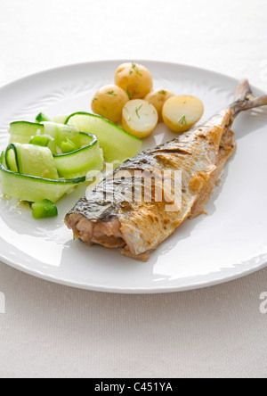 Mackerel with cucumbers and potatoes on plate, close-up - Stock Photo