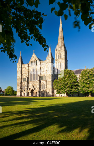 The West Front of Salisbury Cathedral from Cathedral Close, Salisbury, Wiltshire, England. Spring (May) 2011. - Stock Photo