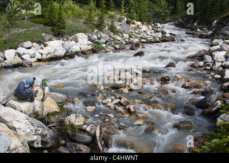 Young man photographing rapids on an icy creek in the Banff National Park along the Icefields Parkway in Alberta, - Stock Photo