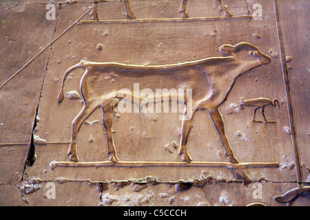 Seti I temple (13th century BC), Abydos, Egypt - Stock Photo