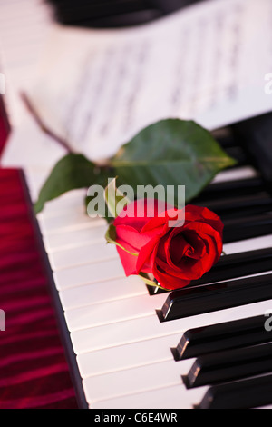 Close up of red rose lying on piano keys - Stockfoto
