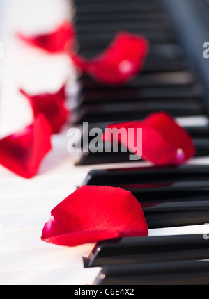 Close up of red rose petals lying on piano keys - Stockfoto