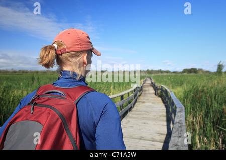 Woman hiking on a marsh boardwalk.  Grassy Narrows Marsh, Manitoba, Canada. - Stock Photo