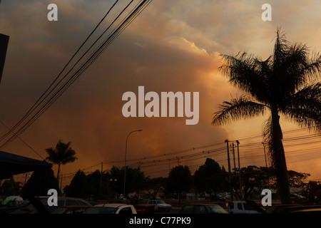 Smoke Cloud, Fire  Burning in the Botanic Garden, blocks the sun, Brasilia, Brazil - Stock Photo