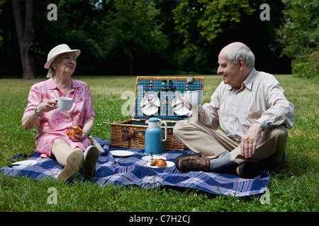 Senior couple enjoying picnic in the park - Stock Photo