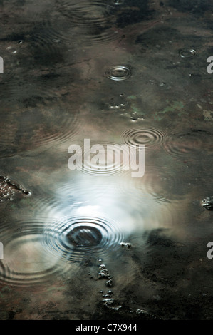 Raindrops in puddle reflecting dark moody stormy sky - Stock Photo