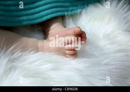 Tiny baby feet under a blanket lying on white fur - Stockfoto