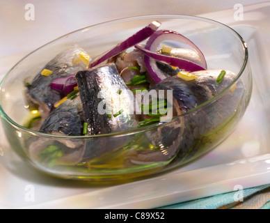 Sardine, olive oil and spring onion salad - Stock Photo