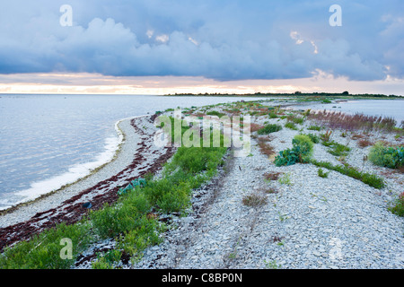 Beach consisting of limestone pebbles - Stock Photo