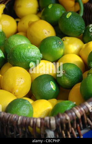 Basket of limes and lemons - Stock Photo