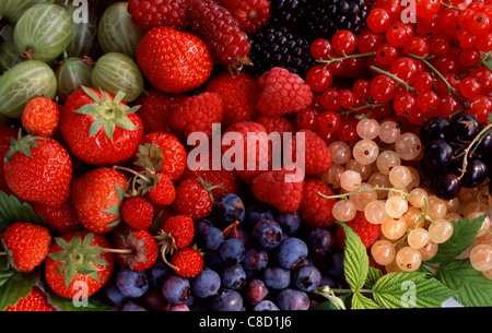 Composition of summer fruit - Stock Photo