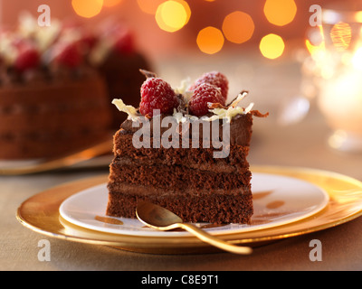 Chocolate Christmas cake - Stock Photo