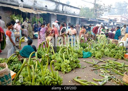Plantains for sale at vegetable market, Chalai, Trivandrum, Kerala, India - Stock Photo