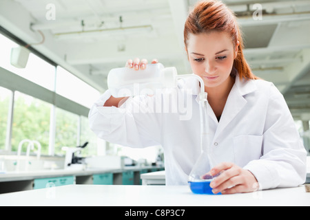 Red-haired focused scientist pouring liquid in a flask - Stock Photo