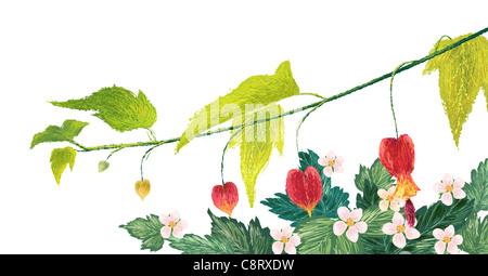 Heart Bleeding Flowers On White Background - Stock Photo