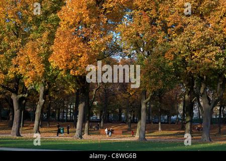 Autumn illustration in Parc du Cinquantenaire, Brussels, Belgium - Stock Photo